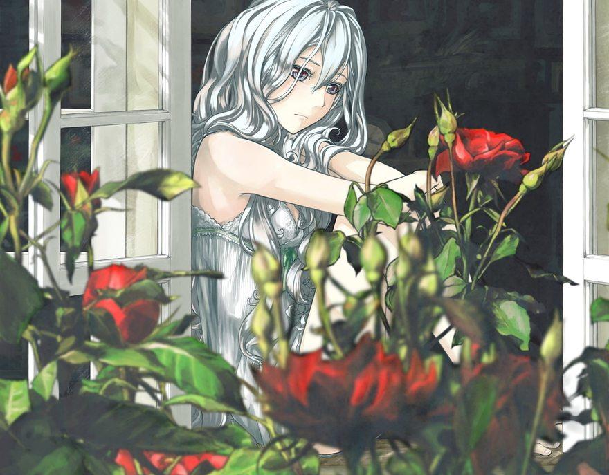 Картинка: Девушка, беловолосая, розы, окно, сидит, грусть