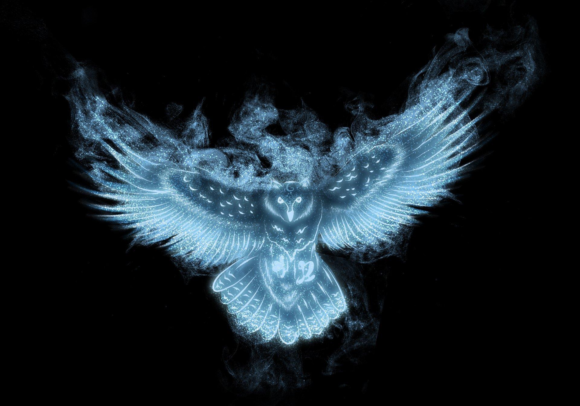 Картинка: Сова, крылья, чёрный фон, частицы