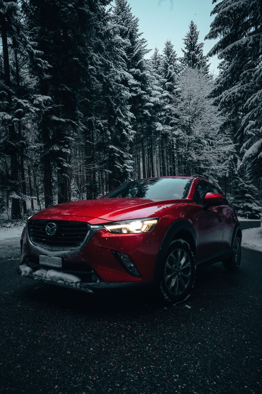 Картинка: Зима, лес, снег, дорога, деревья, автомобиль, красный, Mazda 6