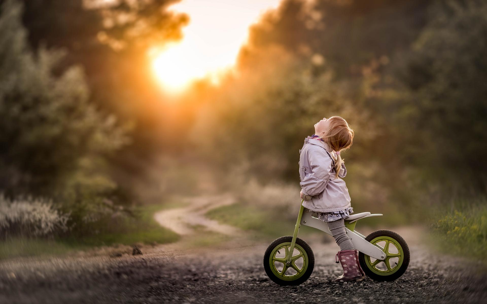 Картинка: Девочка, прогулка, велосипед, лето, вечер, закат, дорога, тропинка, деревья, лес