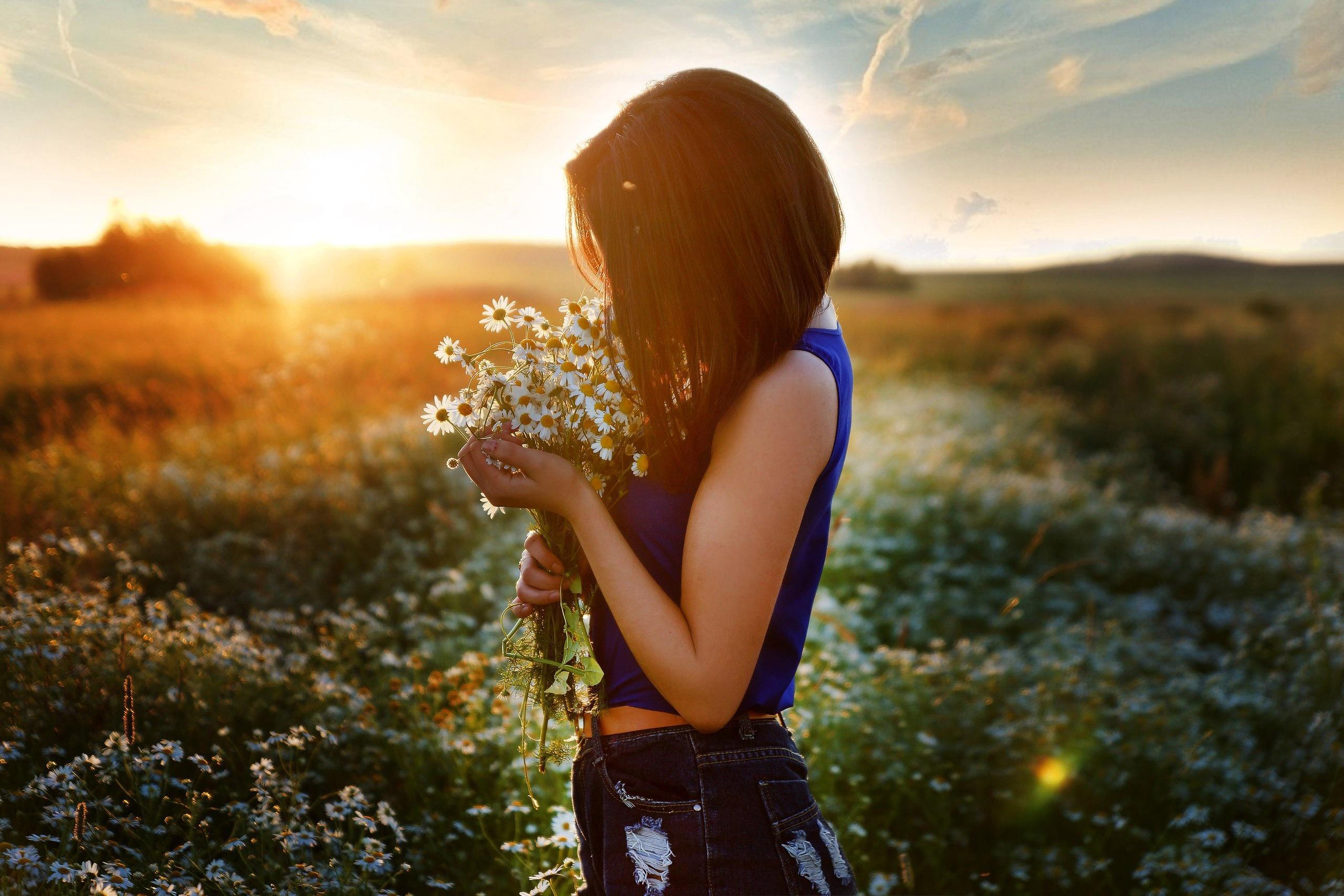 Картинка: Девушка, ромашки, цветы, поле, закат
