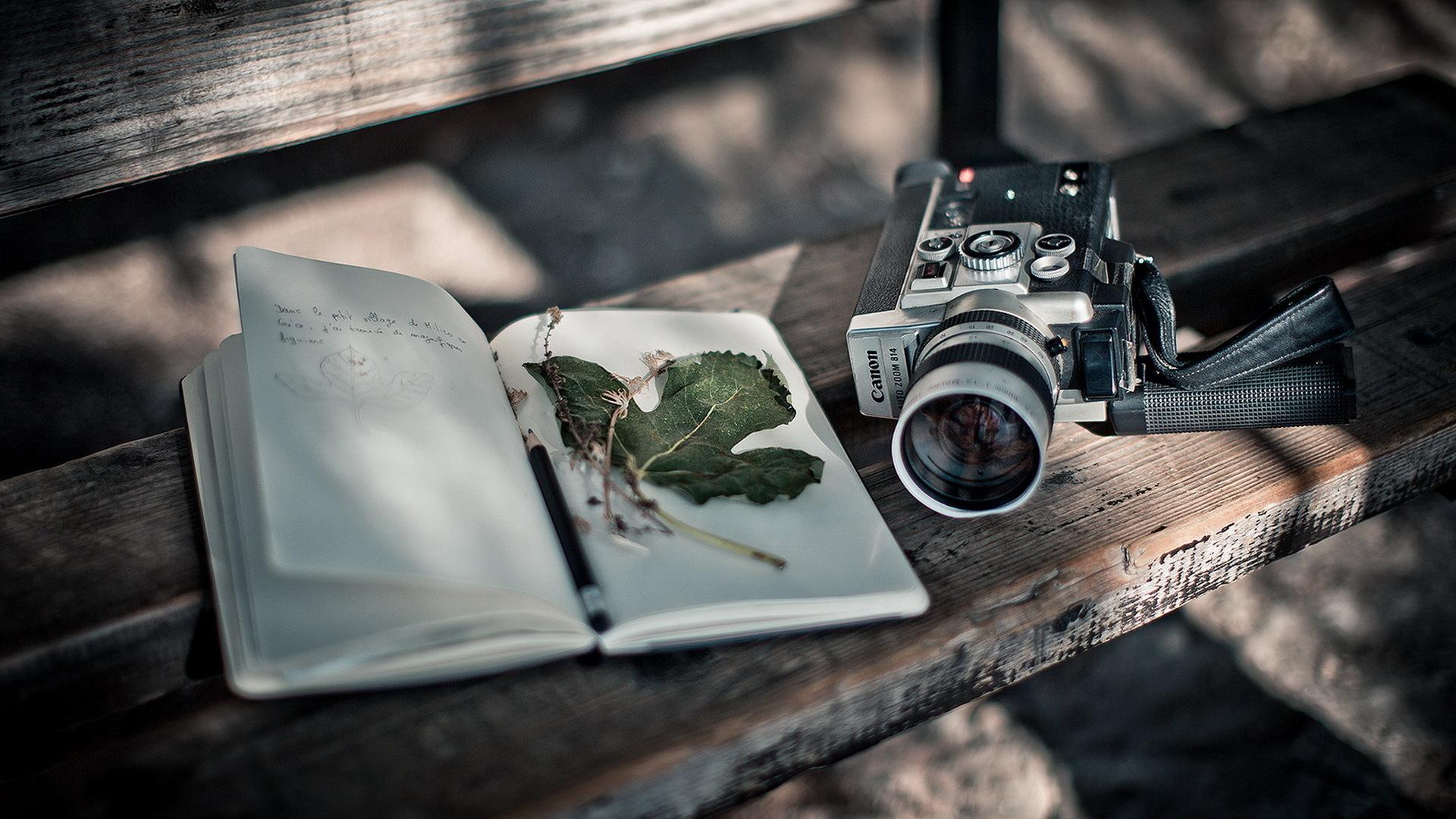 Картинка: Фотоаппарат, камера, Canon, книжка, листок, лежит, скамейка