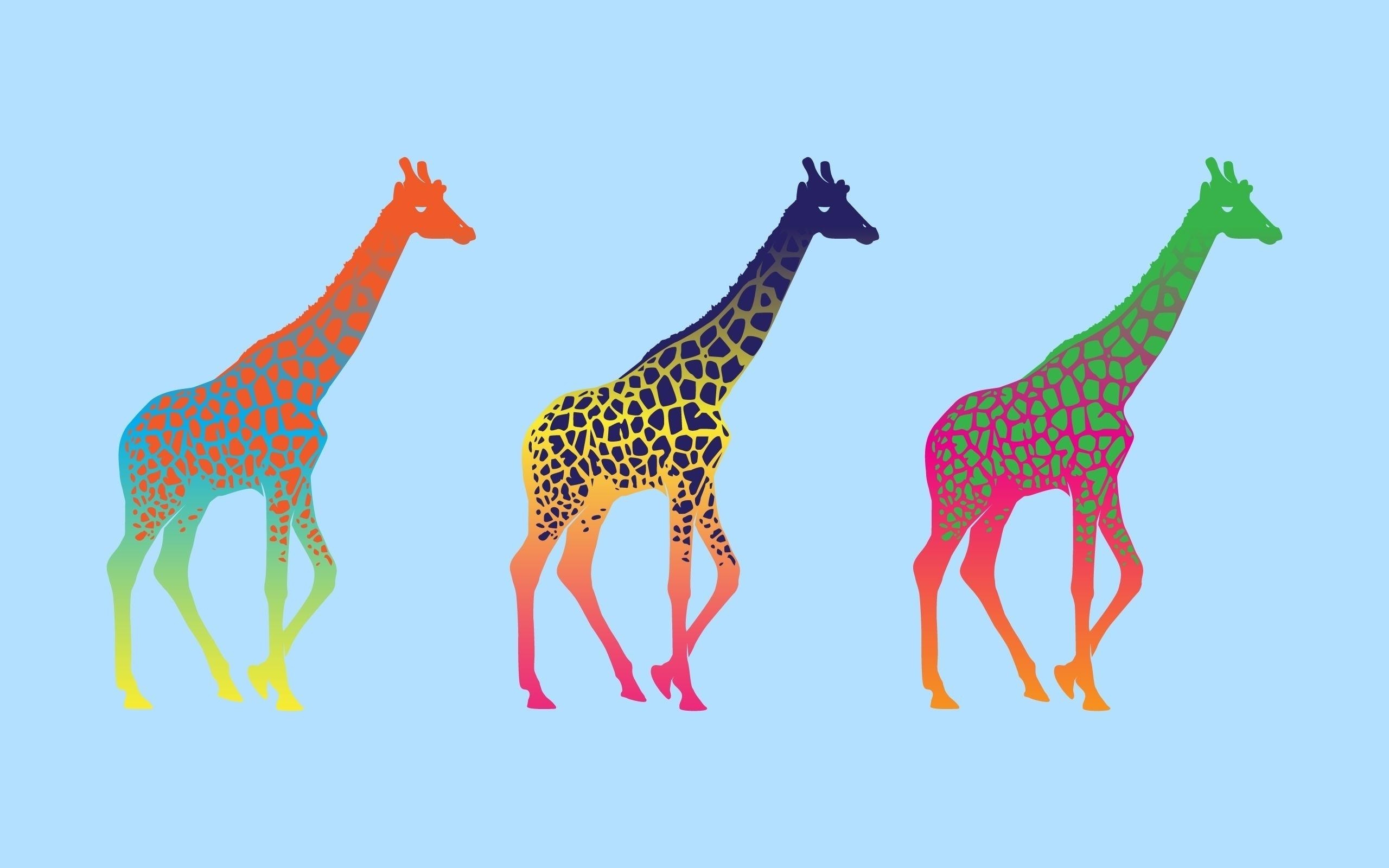 Картинка: Жирафы, трое, пятна, животные, цвет, фон, стиль, поп-арт