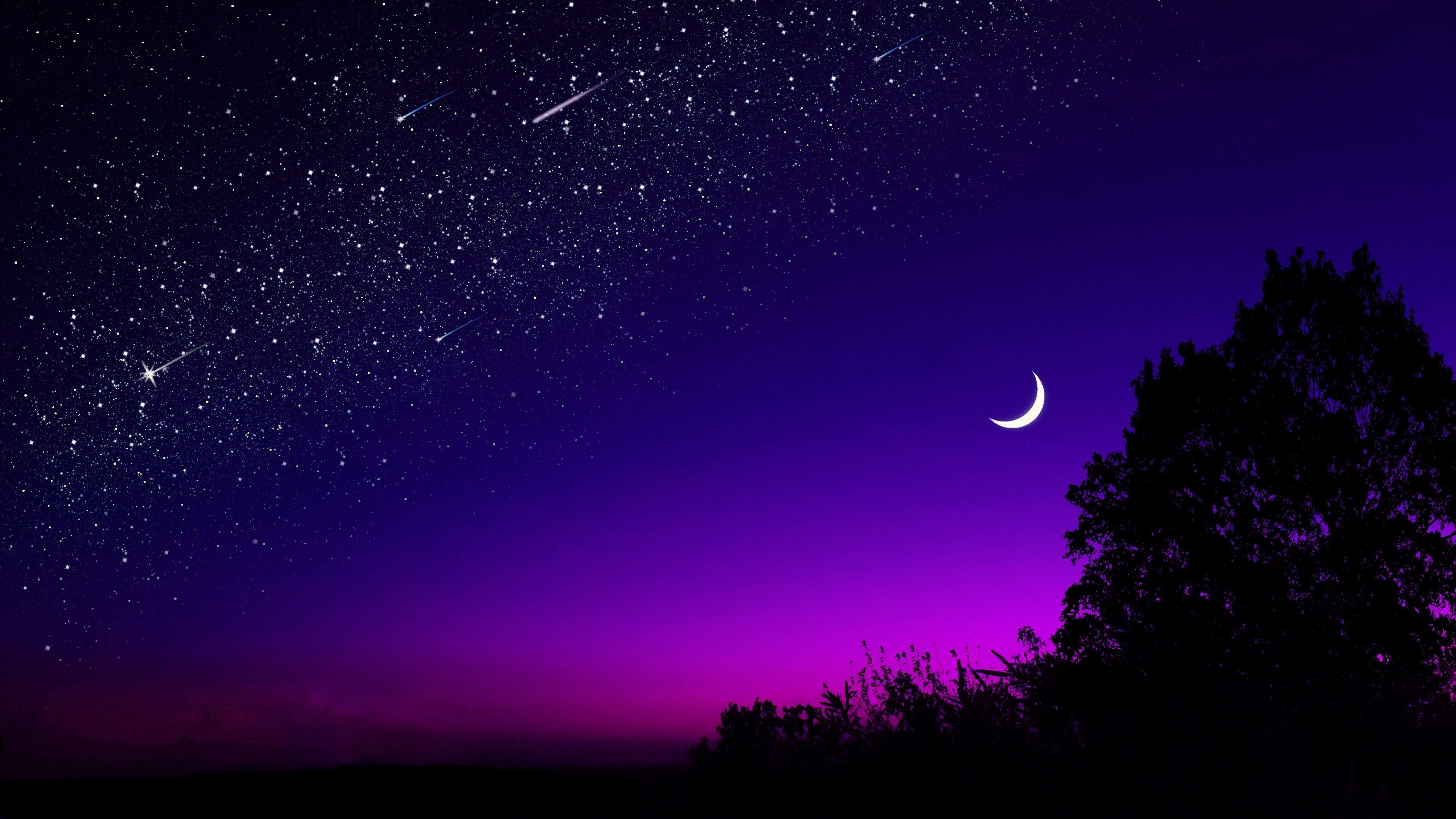 Картинка: Ночь, звёзды, луна, месяц, свет, закат, силуэт, дерево, горизонт, небо