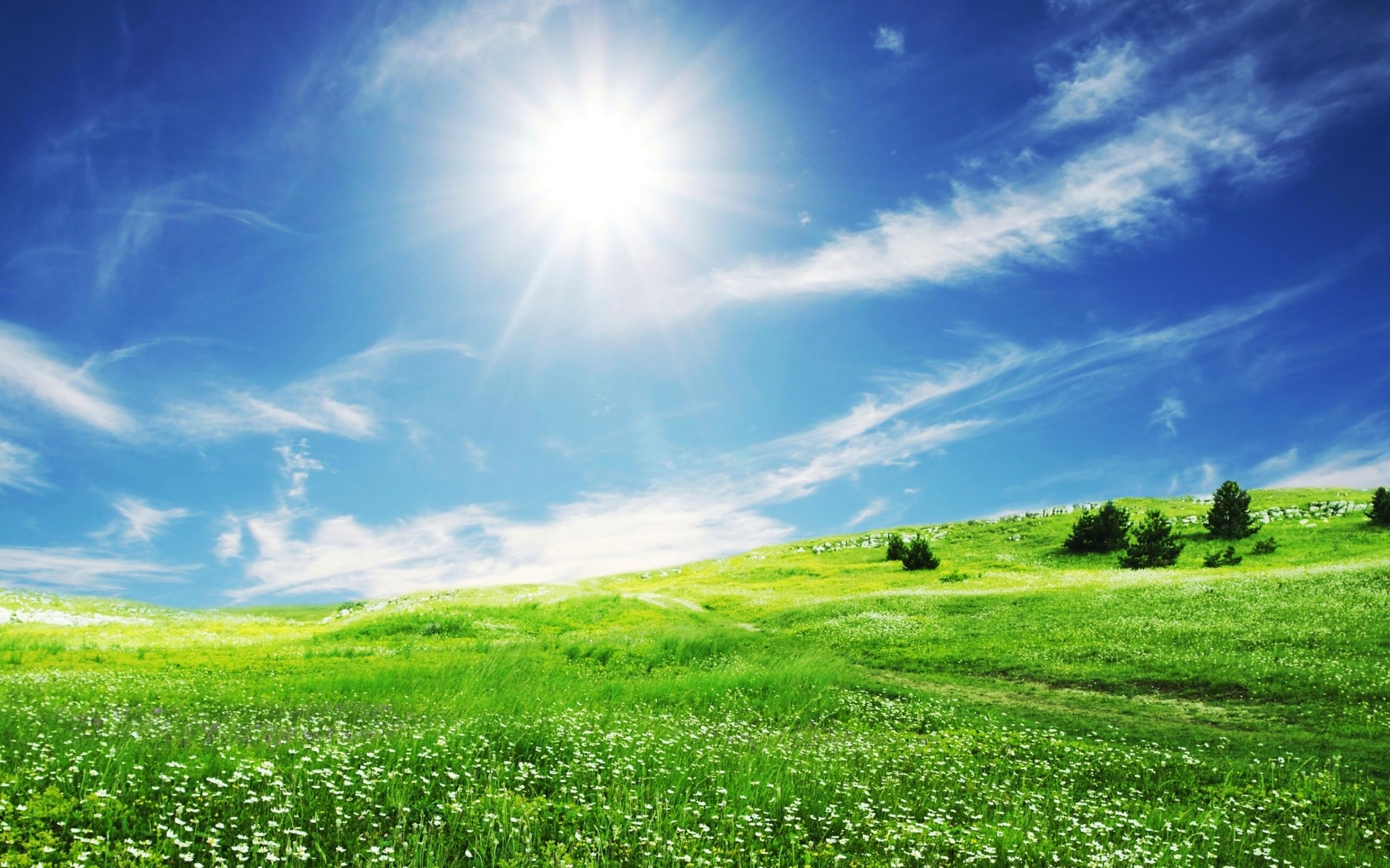 Картинка: Пейзаж, поле, трава, небо, солнце, облака
