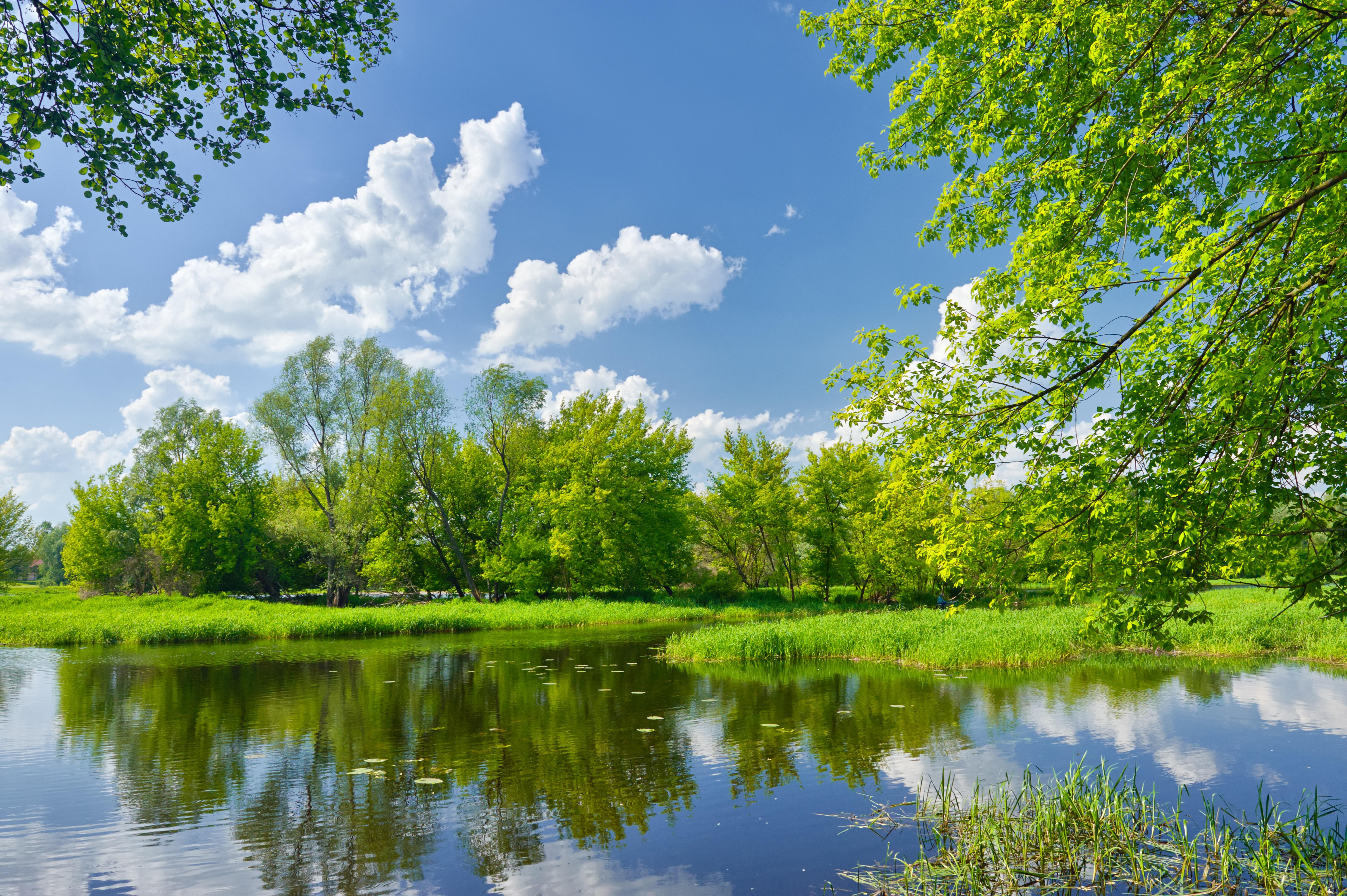 Картинка: Река, лето, пейзаж, вода, отражение, деревья, облака