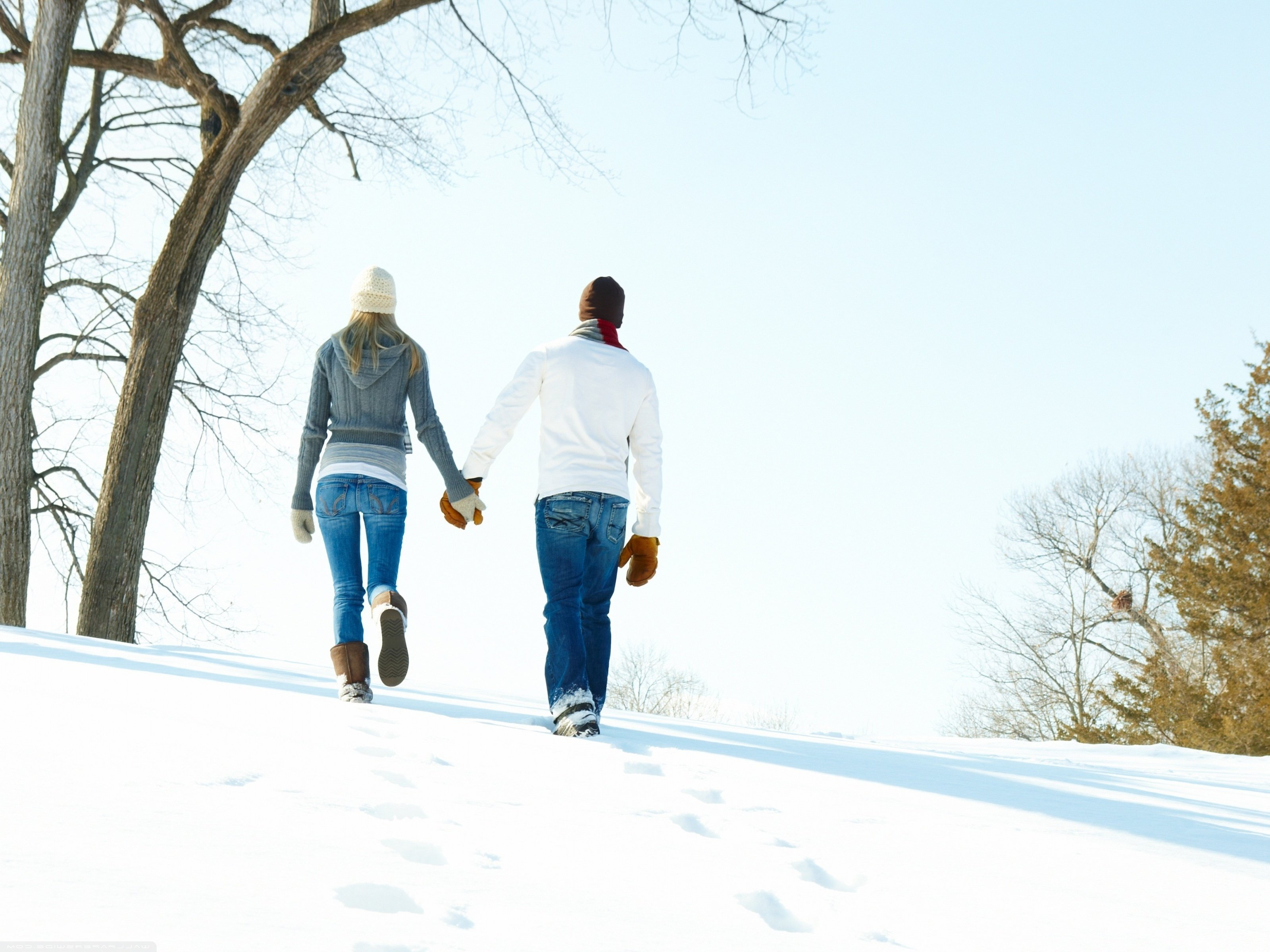 Image: Pair, guy, girl, walk, back, coming, hands, hat, winter, snow, trees