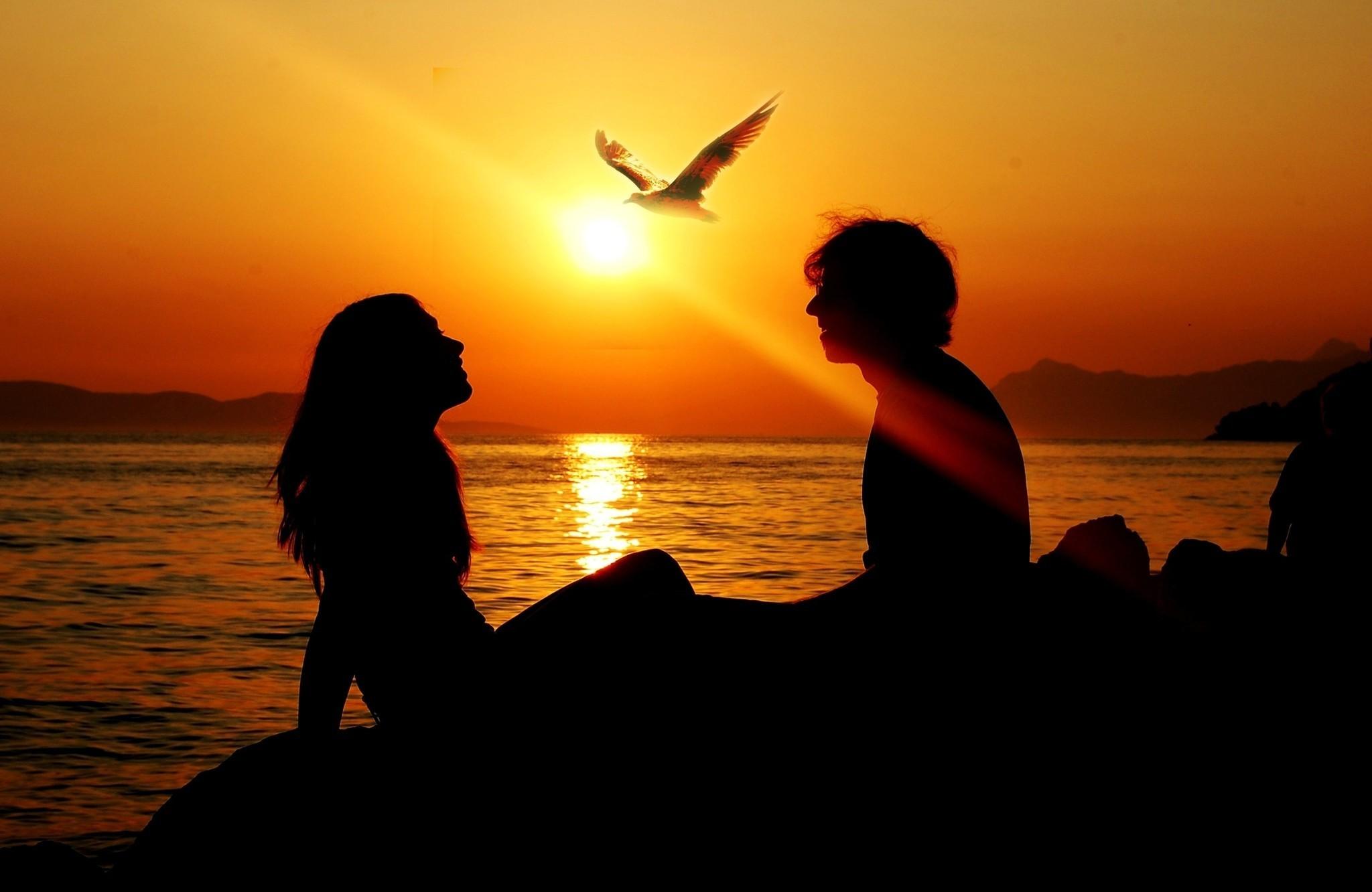 Картинка: Девушка, парень, силуэт, море, закат, солнце, вечер, чайка, горизонт, романтика