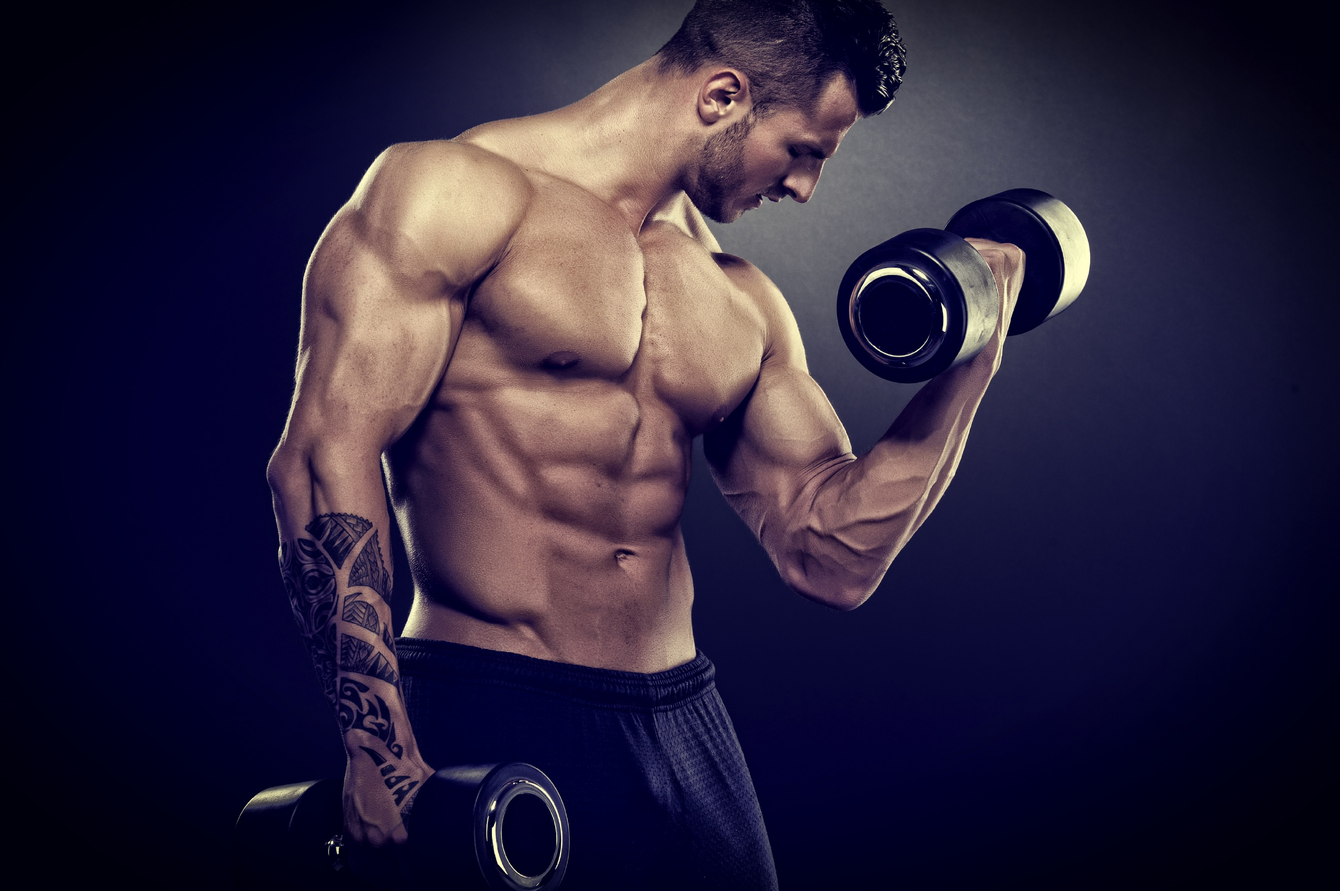 Image: Male, bodybuilder, muscle, body, tattoo, dumbbell