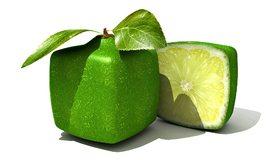 Картинка: Лайм, цитрус, зелёный, квадрат, форма, листочки, белый фон