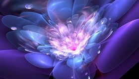 Картинка: Цветок, лепестки, капли, линии, фрактал