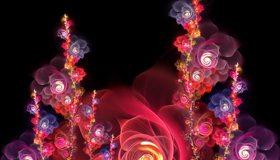 Картинка: Цветы, розы, изгибы, чёрный фон
