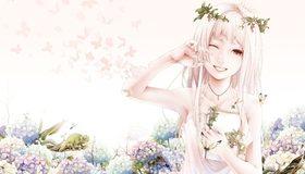 Картинка: Девушка, цветы, бабочки, хамелеон