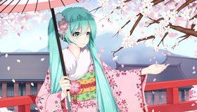 Картинка: Девушка, Hatsune Miku, цветущая, сакура, лепестки, кимоно, волосы, зонтик, vocaloid