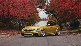 Картинка: BMW, золотистый, M3, F80, Gold, дорога, деревья, осень