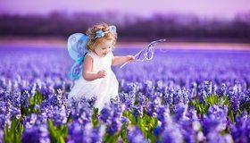 Картинка: Девочка, фея, крылья, волшебная палочка, платье, лаванда, цветы, поле, бежит