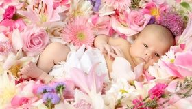 Картинка: Малыш, ребёнок, глаза, взгляд, лежит, цветы, роза, гербера