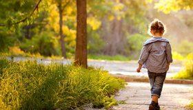 Картинка: Девочка, ребёнок, парк, аллея, прогулка, трава, деревья, листья, свет, лучи, лето