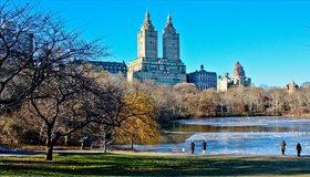 Картинка: Парк, здания, Нью-Йорк, деревья, ветки, озеро, небо, люди