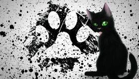 Картинка: След, чёрный, кляксы, глаза, зелёные, кот, кошка