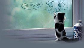 Картинка: Кошка, кот, спина, окно, надпись, рисунок, настроение, посуда, гжель