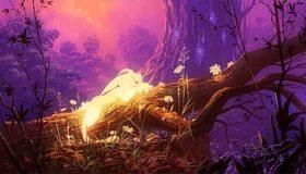Картинка: Кролик, лежит, спит, лес, дерево, растения, вечер