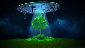 Картинка: НЛО, летающая тарелка, дерево, свет, трава, небо, ночь, звёзды
