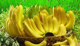 Картинка: Бананы, фрукты, корзина, лежат, желтый, трава, ромашки, цветы