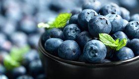 Картинка: Черника, ягоды, листочки, лето, витамины, чашка