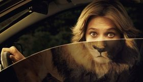Картинка: Женщина, лев, глаза, руль, креатив