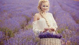 Картинка: Блондинка, девушка, волосы, коса, макияж, шлаза, взгляд, улыбка, корзина, поле, лаванда, цветы