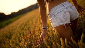 Картинка: Девушка, шорты, попа, бёдра, ноги, руки, поле, растения, злаки