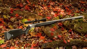 Картинка: Оружие, винтовка, листва, лежит, дерево, прицел