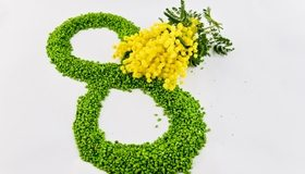 Картинка: Праздник, восьмёрка, 8 марта, мимоза, цветы, жёлтый, веточка, белый фон