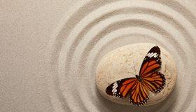 Картинка: Бабочка, крылья, окрас, камень, песок