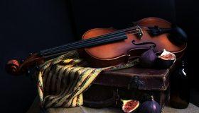 Картинка: Скрипка, струны, инструмент, чемодан, инжир