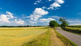 Картинка: Дорога, трасса, даль, лето, трава, деревья, поле, небо, облака, день