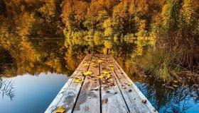 Картинка: Осень, речка, река, вода, отражение, мостик, листья, деревья