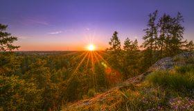 Картинка: Деревья, закат солнца, холм, трава, небо
