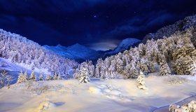 Картинка: Зима, снег, лес, ночь, небо, звёзды, елки, холм, горы