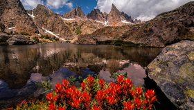 Картинка: Горы, вода, озеро, отражение, цветы, растения, небо, облака