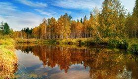 Картинка: Осень, деревья, листва, трава, отражение, озеро, вода, день, небо, облака