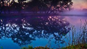 Картинка: Лес, туман, вечер, вода, озеро, отражение, небо