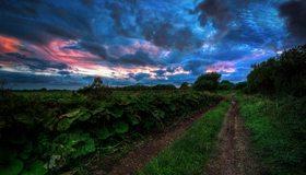 Картинка: Дорога, трава, зелень, растение, небо, облака, тучи, закат