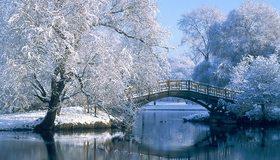 Картинка: Зима, мороз, деревья, иней, снег, река, отражение, деревянный мост, уточки