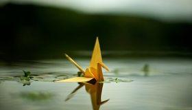 Картинка: Оригами, журавлик, бумажный, вода, отражение, плывёт
