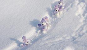 Картинка: Игрушки, медвежата, снег, зима, свитер, шапка, катаются, горка, следы