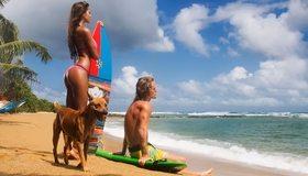 Картинка: Девушка, брюнетка, модель, Виктория Одинцова, мужчина, собака, пляж, песок, море, солнце, день, доска, сёрфинг