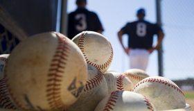 Картинка: Бейсбол, мячи, игроки, мужчины, номера