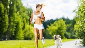 Картинка: Пробежка, бег, девушка, собака, деревья, парк, утро